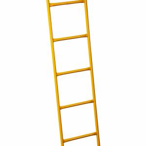 ACCESS LADDER 5' - Ladder