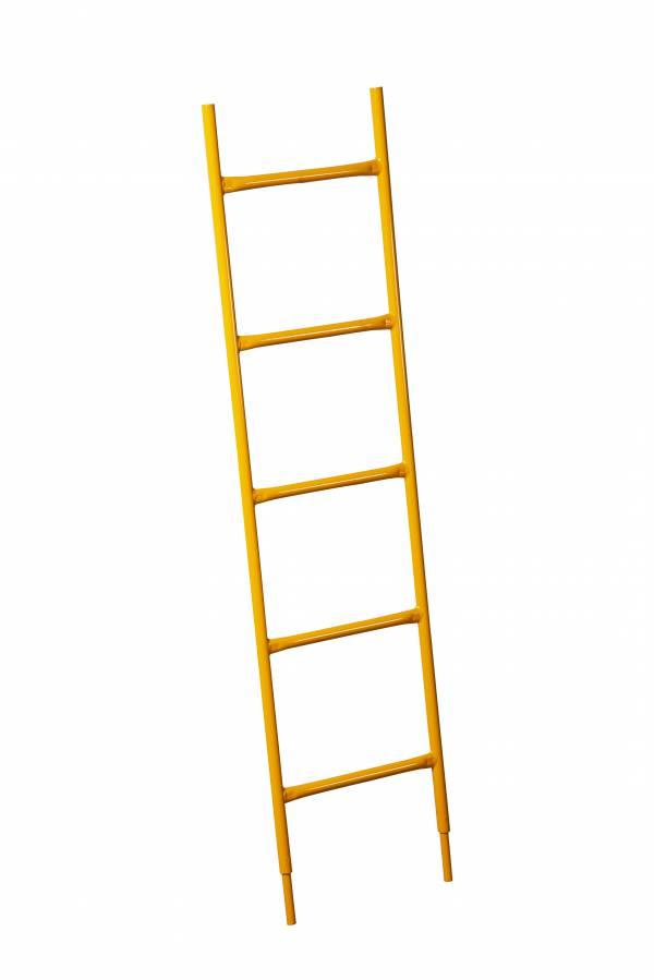 ACCESS LADDER 5' - Ladder